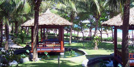Hotel Blue Ocean Resort i Vietnam.