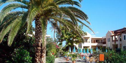 Blue Sea Apartments på Kreta, Grækenland.
