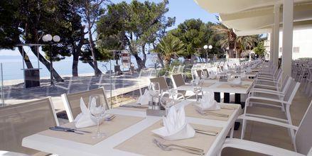 Strandbaren på Hotel Bluesun Alga i Tucepi, Kroatien