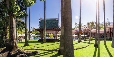 Hotellets frodige have på Hotel Botanico i Puerto de la Cruz på Tenerife, De Kanariske Øer.