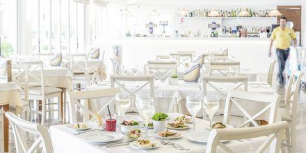 Restaurant på Hotel BQ Alcudia Sunvillage på Mallorca, Spanien
