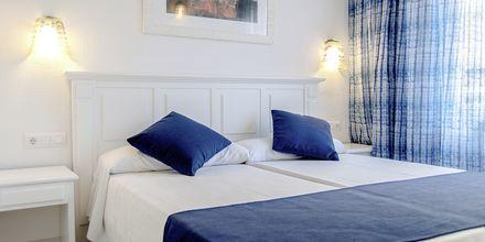 Dobbeltværelse på Hotel BQ Alcudia Sunvillage på Mallorca, Spanien