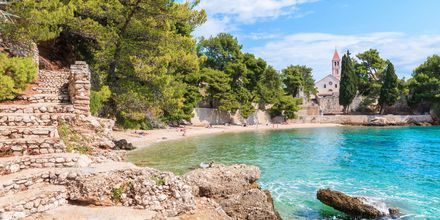 Hyggelige badebugter med krystalklart vand i Brac, Kroatien.
