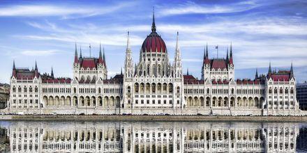 Parlamentet i Budapest er en mægtig bygning.