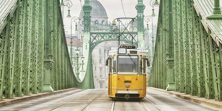 Gule sporvogne er et af Budapest's klassiske symboler.
