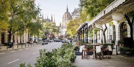 Restauranter er der mange af i Budapest, Ungarn.