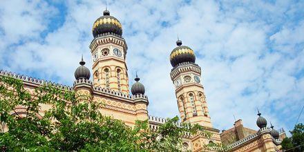 Budapest's store synagoge er Europas største synagoge.