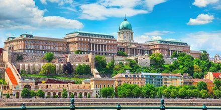 Budapest's kongelige slot og bakken, som det ligger på, er en del af UNESCO's Verdensarvsliste.