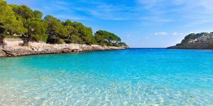 Smukke badebugter i Cala d'Or på Mallorca, Spanien.