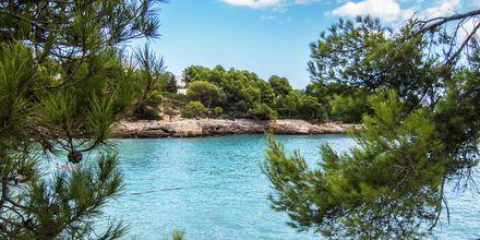 Cala d'Or på Mallorca, Spanien.
