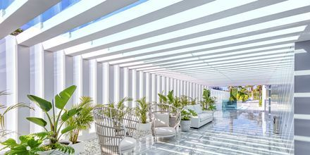 Hotel Canary Garden Club i Maspalomas på Gran Canaria.