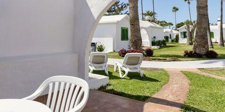 2-værelses lejlighed i bungalow på Hotel Canary Garden Club i Maspalomas på Gran Canaria.