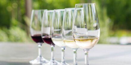 To af de mest populære vingårde i Cape Town er Stellenbosch og Franschhoek,