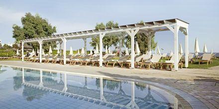 Hotel Capo Bay i Fig Tree Bay, Cypern