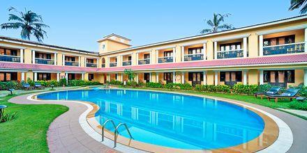 Poolen for dobbeltværelser på Casa de Goa, Goa i Indien.