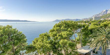 Stranden nedenfor Hotel Central Beach 9 i Makarska, Kroatien.
