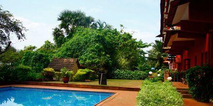 Poolområdet på Hotel Chalston Beach Resort i Goa i Indien.