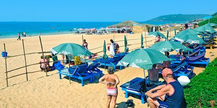 Stranden ved Hotel Chalston Beach Resort i Goa i Indien.
