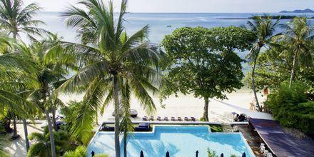Pool og strand på Chura Samui Resort på Koh Samui, Thailand.