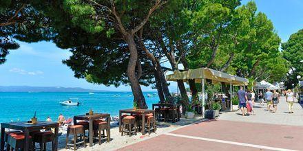Strandpromenaden ved Hotel City Beach på Makarska Riviera, Kroatien.