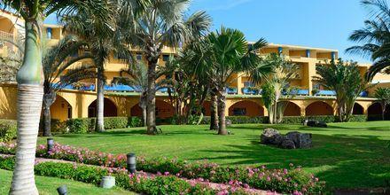 Hotel Club Drago Park på Fuerteventura, De Kanariske Øer, Spanien.