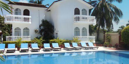 Poolområde på Colonia Santa Maria i Goa