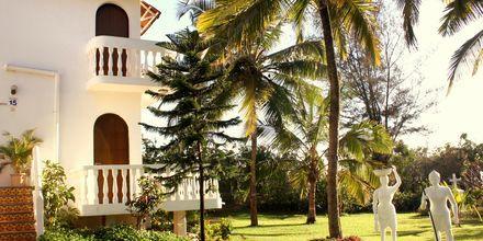 Colonia Santa Maria i Goa