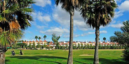Golfbanen på Cordial Green Golf i Maspalomas på Gran Canaria