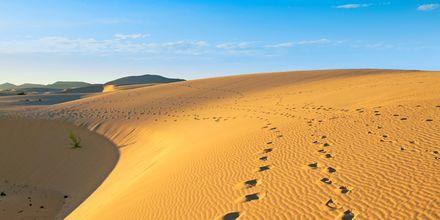 Sanddynerne ved Corralejo på Fuerteventura, De Kanariske Øer, Spanien.