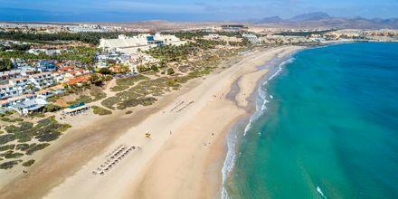 Costa Calma/Playa Barca/Tarajalejo på Fuerteventura, De Kanariske Øer.