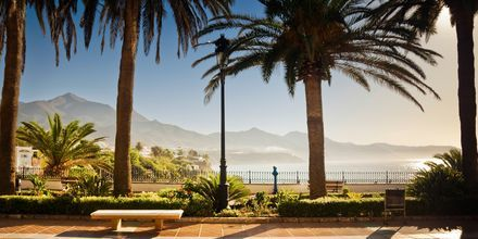 Skønne rejsemål og fantastisk Klima på Costa del Sol