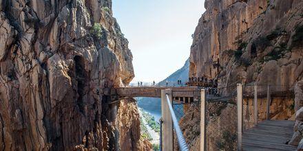 Tag på vandretur på Caminito del Rey udenfor Malaga.