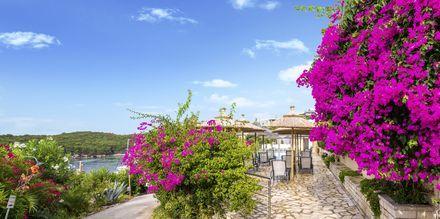 Hotel Costa Smeralda i Sivota, Grækenland