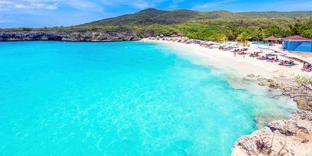 Strandene i Curacao er enestående - hvidt sand og krystalklart vand. Her er det stranden Grote Knip, Curacao.