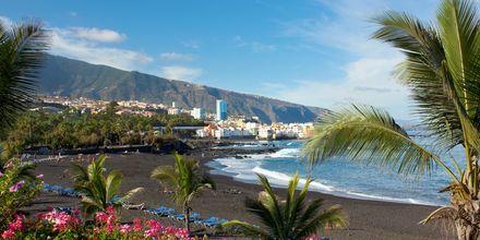 Playa del Cactus i Puerto de la Cruz på Tenerife, De Kanariske Øer, Spanien.