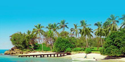 Bacardi Island, Den Dominikanske Republik.