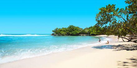 Strand, Den Dominikanske Republik.