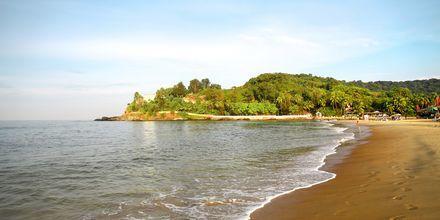 Baga Beach, det nordlige Goa i Indien.