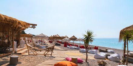 Strandbar på Dhermi i Albanien