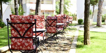 Diamma Resort, Durres Riviera i Albanien.