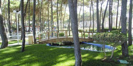 Den hyggelige have på Diamma Resort, Durres Riviera i Albanien.