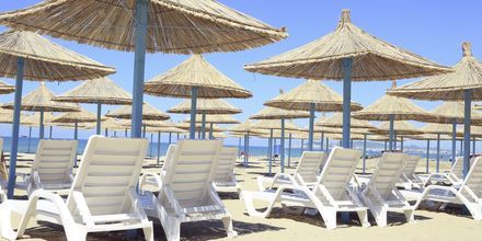 Stranden ved Diamma Resort, i Dures Riviera, Albanien