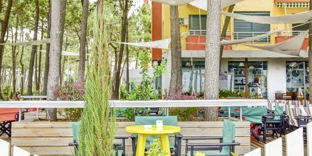 Bar på Diamma Resort, Durres Riviera i Albanien.