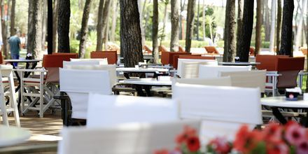 Restaurant på Diamma Resort, i Dures Riviera, Albanien