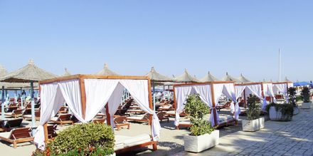Strand ved Diamma Resort, i Dures Riviera, Albanien