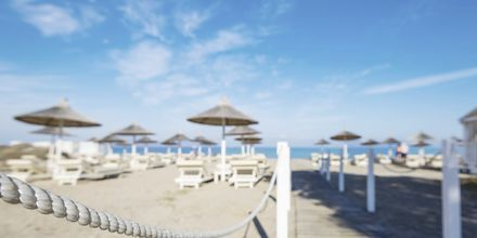 Stranden ved Hotel Diamond Deluxe Hotel & Spa i Lambi på Kos, Grækenland.
