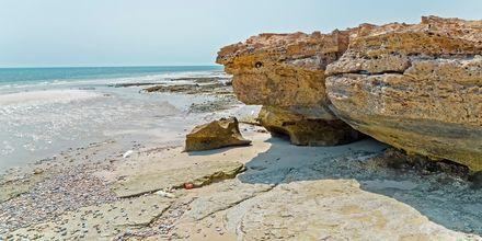 Stranden Fuwairit Beach udenfor Doha i Qatar.