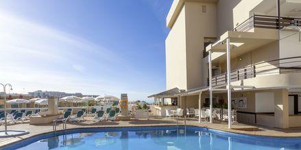 Pool på Hotel Dragos del Sur på Tenerife, De Kanariske Øer.