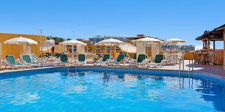 Poolen på Hotel Dragos del Sur på Tenerife, De Kanariske Øer.