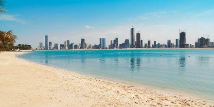 Strand i Dubai, De Forenede Arabiske Emirater.